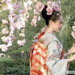 11 мифов о Японии