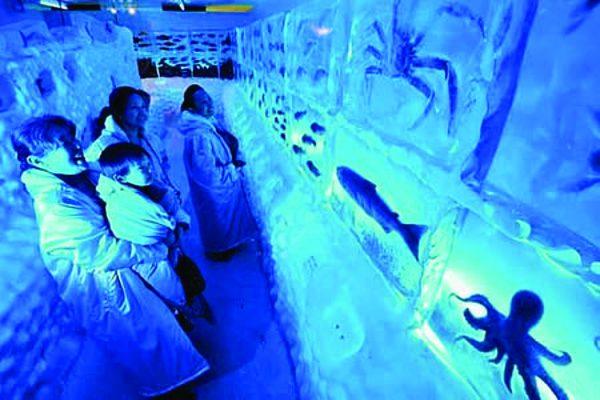 Zamorozhenny_akvarium_v_Yaponii
