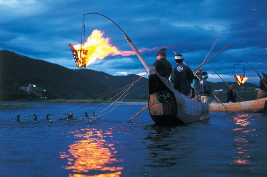 Укаи-ночная рыбалка с бакланами. Япония5