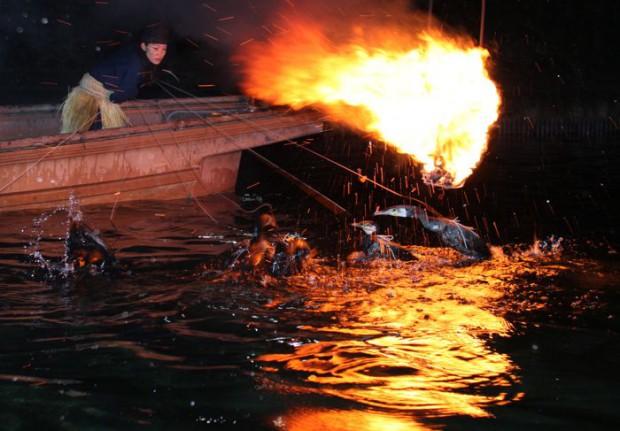 Укаи-ночная рыбалка с бакланами. Япония4