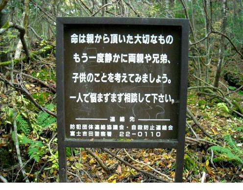 misticheskie-mesta-yaponii-les-samoubijc