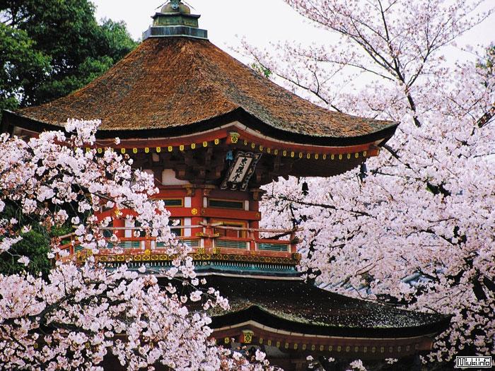 Yaponskaya_pagoda